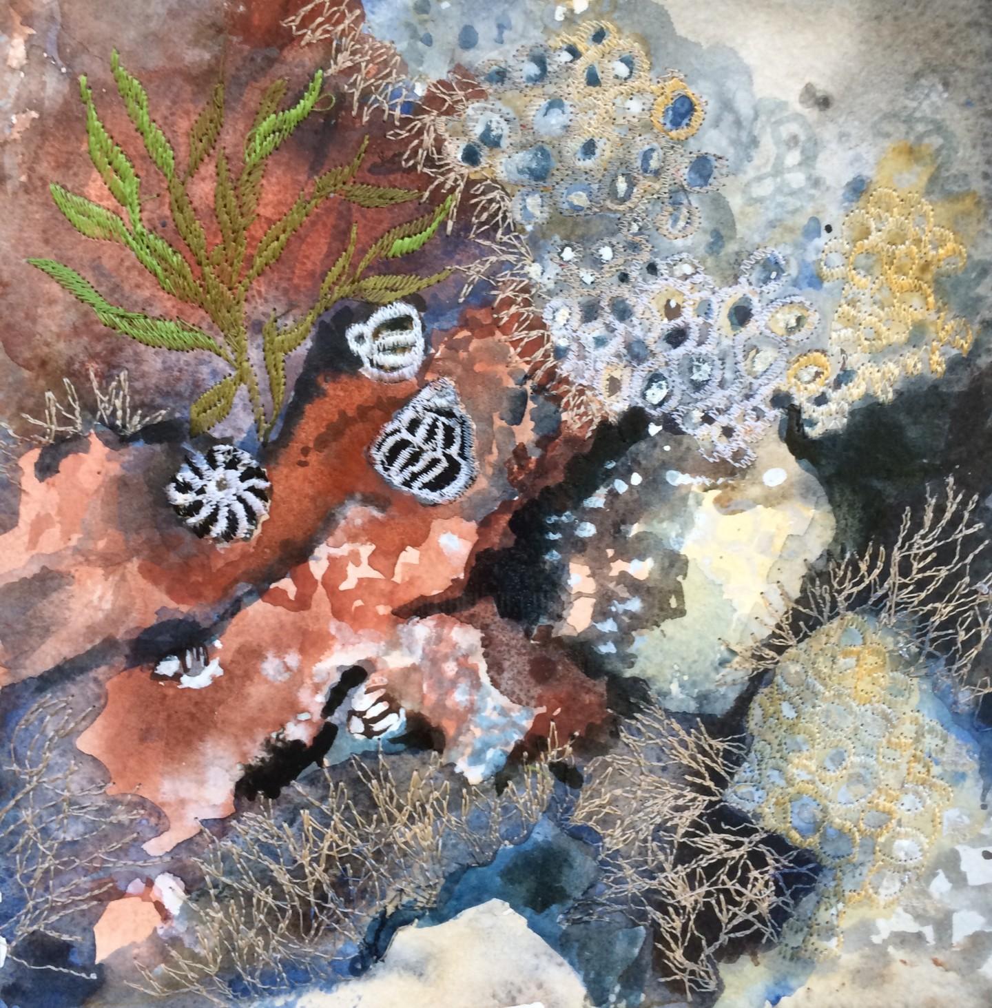 Ann Dunbar - Looking down 1