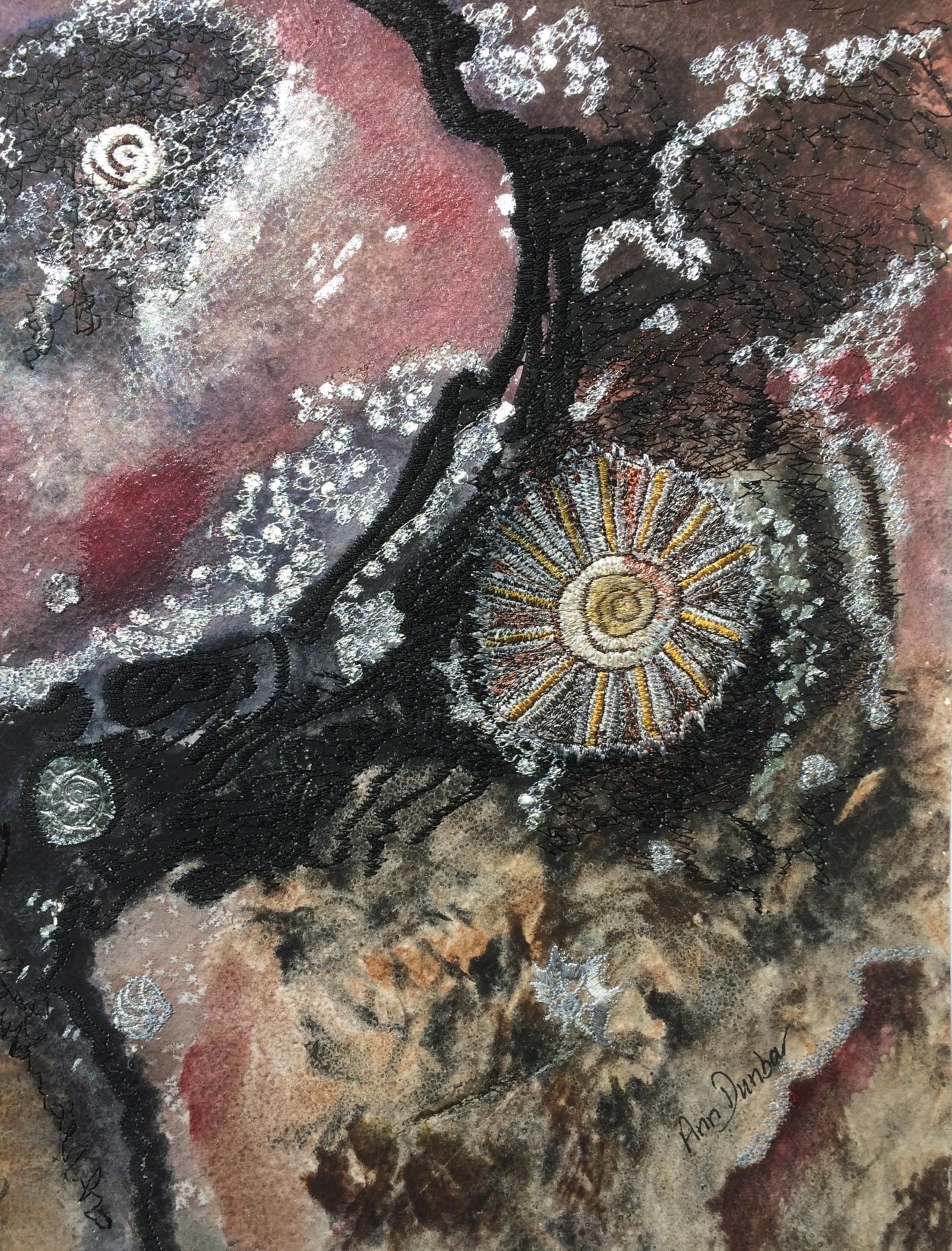 Ann Dunbar - Barnacle & Shell 2