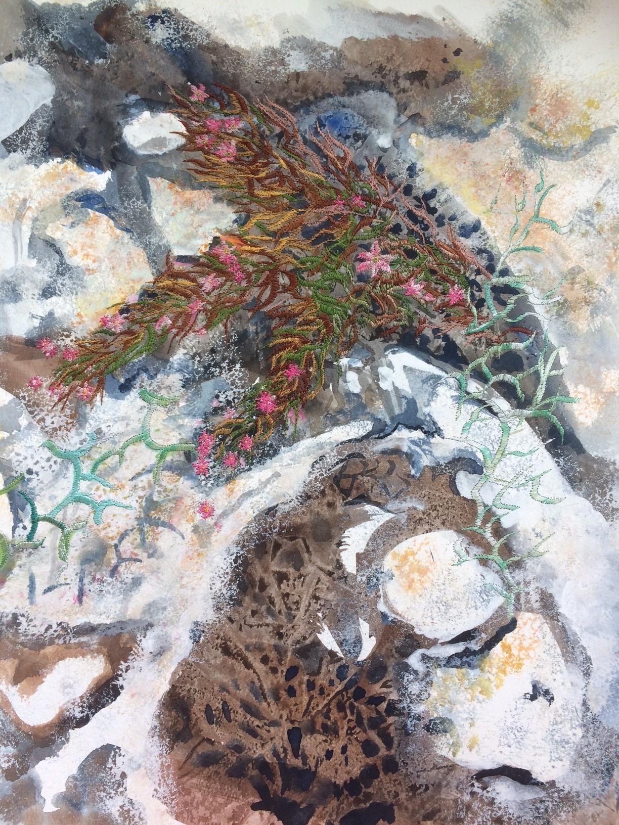 Ann Dunbar - Cracks in the rock