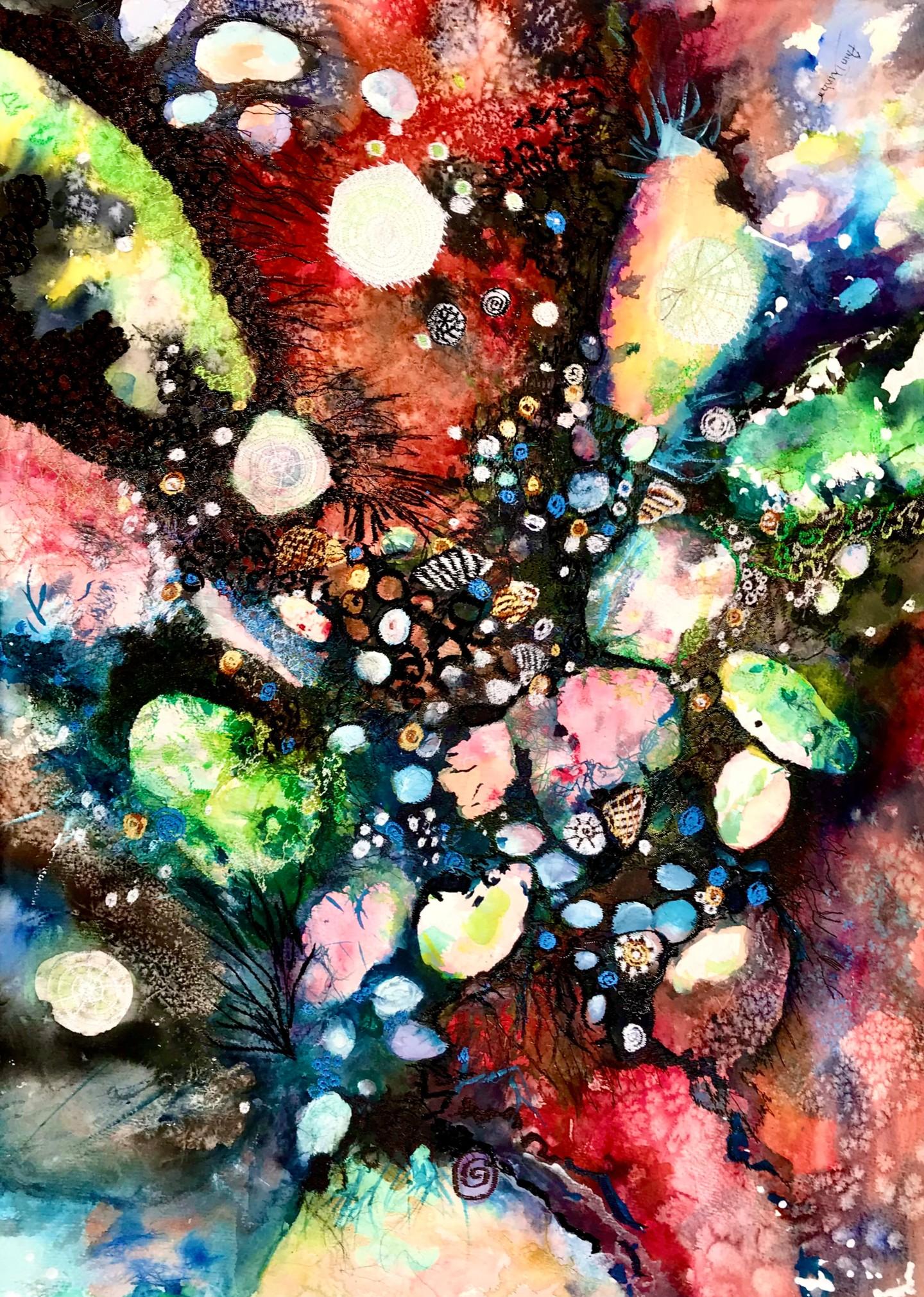 Ann Dunbar - Rockpool Radiance