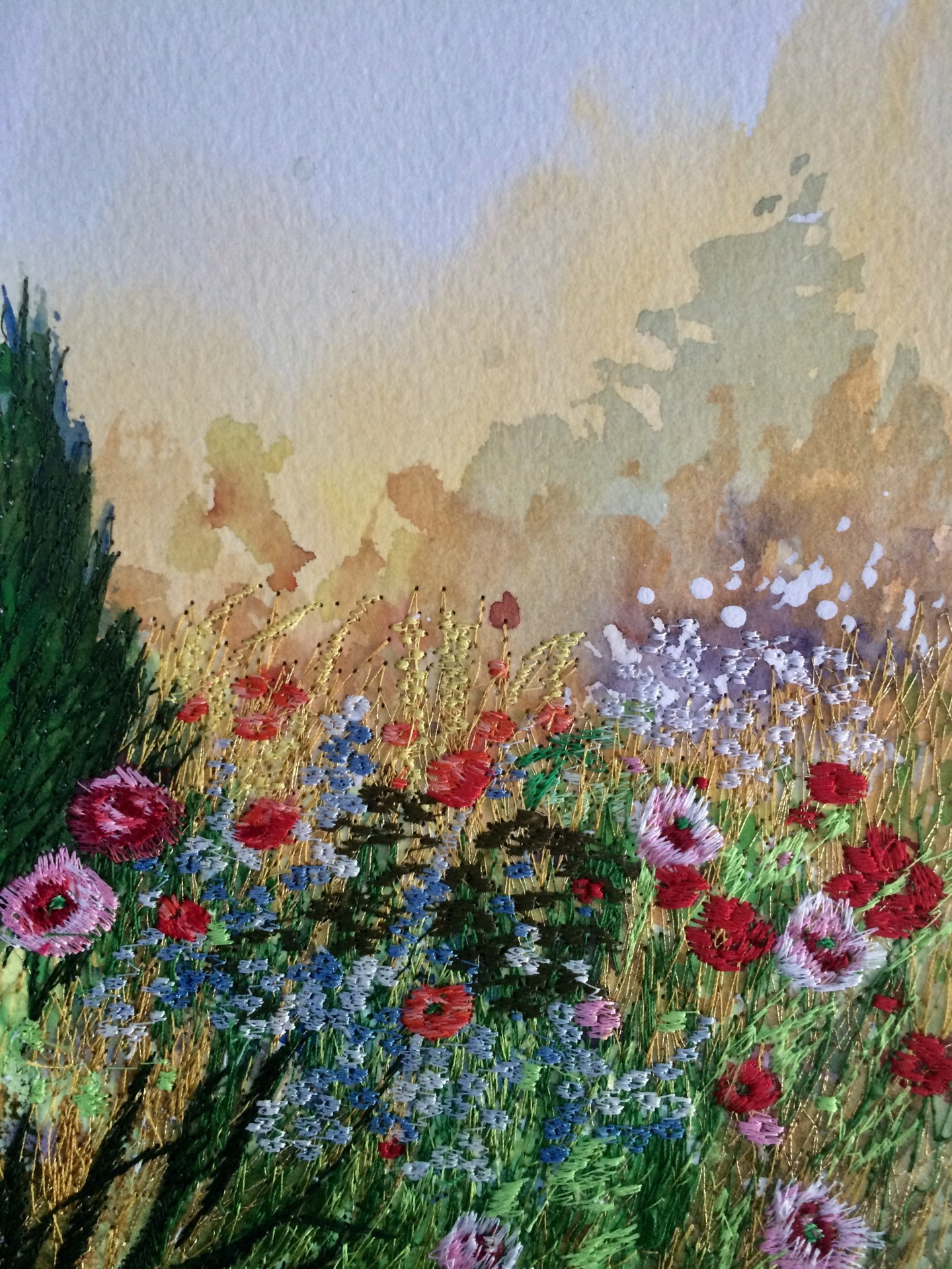 Ann Dunbar - A Ray of Sunshine