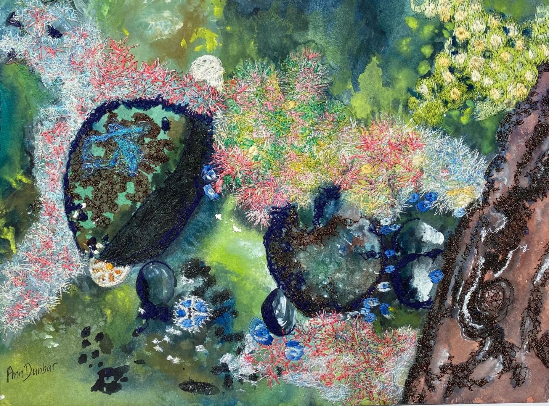 Ann Dunbar - Low tide leftovers