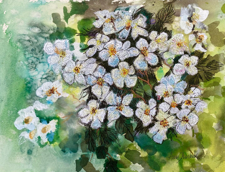 Ann Dunbar - Multi Rosa Filipis